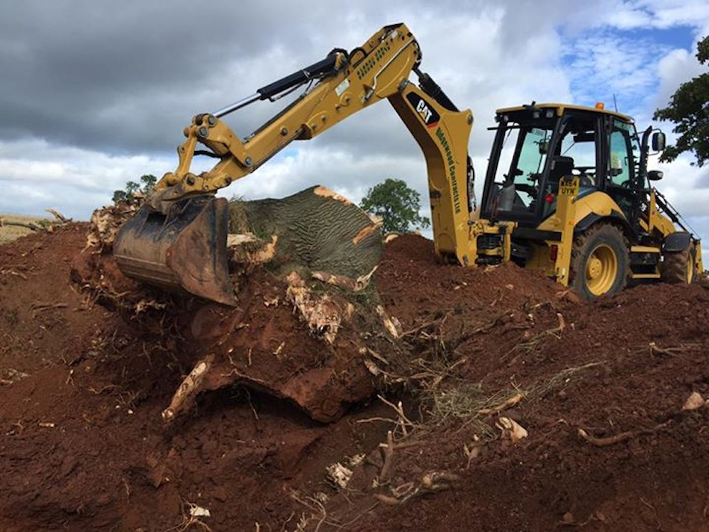 Ridgewood Contracts Tree Removal Service Staffordshire & Shropshire